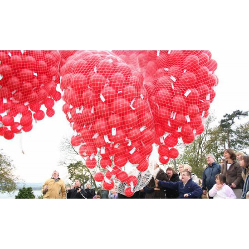 Cattex Net For Decoration With Balloons